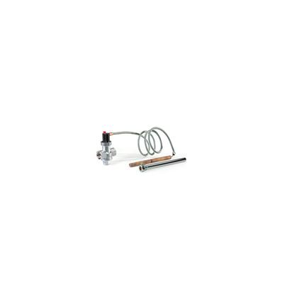 Valvola automatica di scarico termico D.S.A. La Nordica - Extraflame